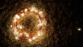 2-prong-fairy-lights-2